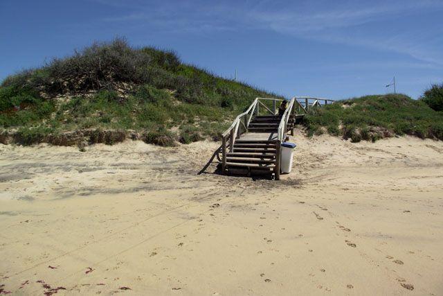 Playa de La Ballena