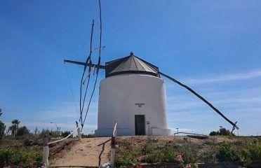 Las Tres AveMarias Windmills