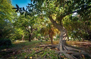 Las Acacias Park