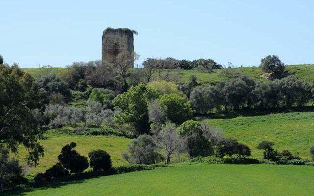 La Mesa del Esparragal Roman Site