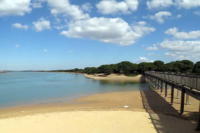 playa-del-rio-san-pedro-puerto-real-cadiz