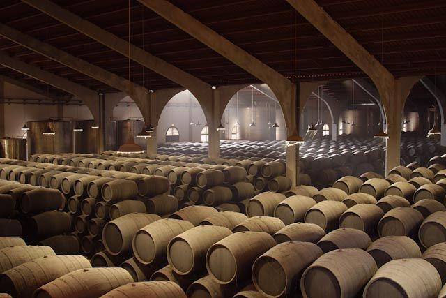 Bodegas Real Tesoro & Valdespino, Jerez, ofrece más que una visita enoturística. Podrás disfrutar de una experiencia única sobre el vino, arte y tradición.