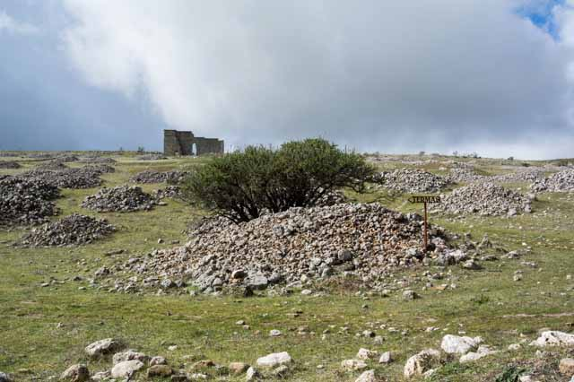Acinipo Prehistoric and Roman Site