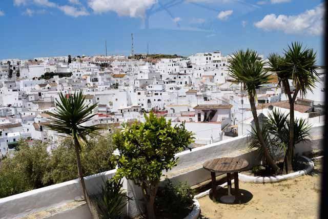 El Claustro de Vejer de la Frontera es un espectacular jardín restaurante al aire libre donde podrás disfrutar de la mejor cocina local de la Janda, mediterránea