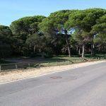 parquenatural_la_arrosa3