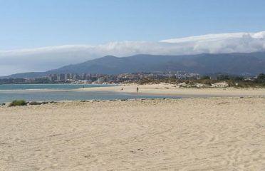 Playa de Palmones