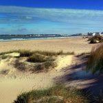 La Playa de Los Toruños es una playa aislada de núcleos urbanos, en excelente estado ambiental, en el Parque Natural de la Bahía de Cádiz, donde sopla fuerte el viento y puede practicarse el deporte de vela y windsurf.