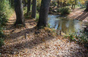 Majaceite River