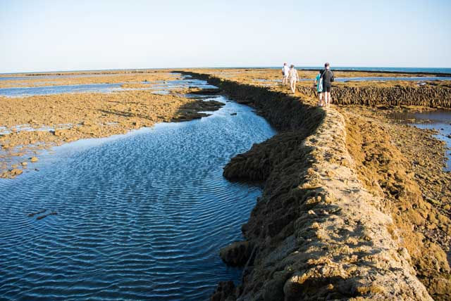 Fishing weirs are very typical in Rota, and you should definitely get to know its history.