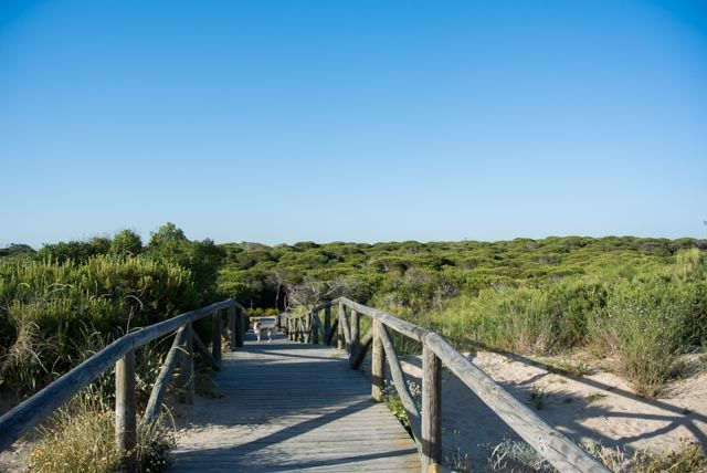 There are many things to do while in Rota: why don't you enjoy nature?