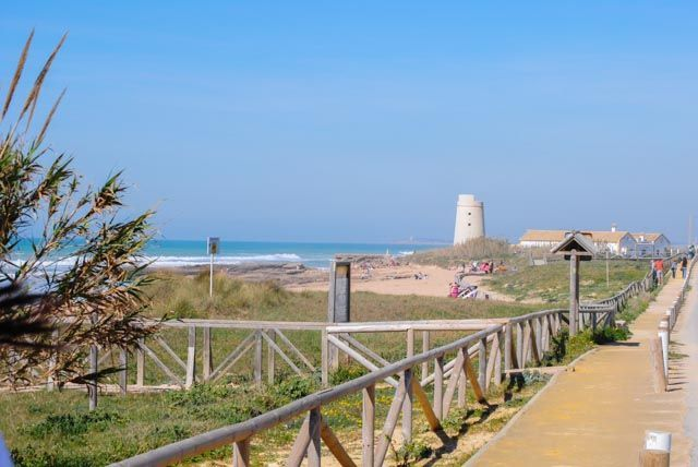 Discover El Palmar, one of the most special spots in the province of Cadiz.