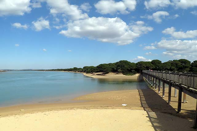 There are some beaches in Puerto Real which are great for unwinding for some hours.
