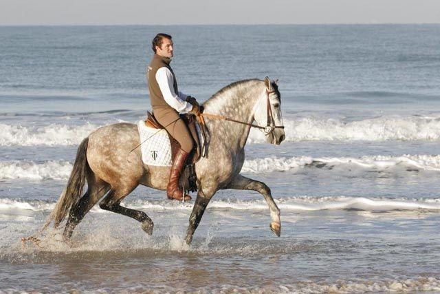 Horseback riding on the beach is one of those things you must do before you die. What better place than Chiclana?