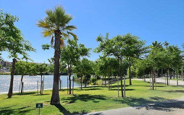 Parque Magallanes
