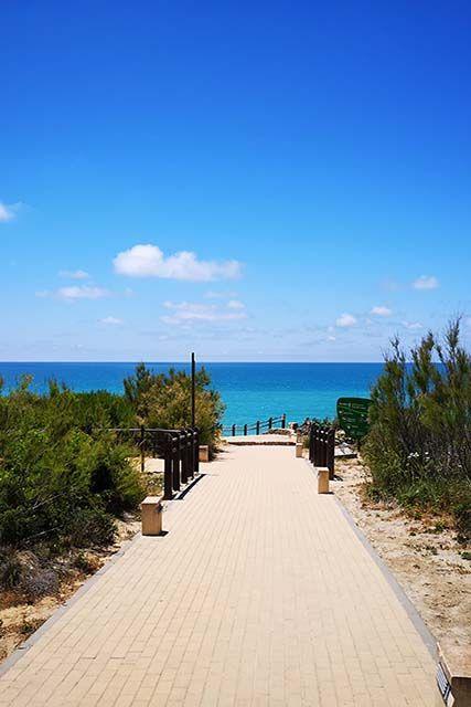 camino hacia la playa la barrosa